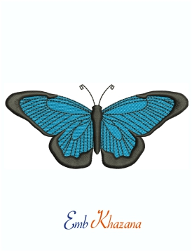 Butterfly Blue And Black Embroidery Design