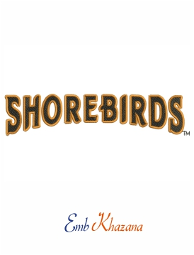 Delmarva Shorebirds Wordmark Logo
